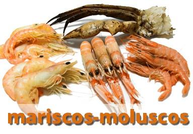 Mariscos - Moluscos
